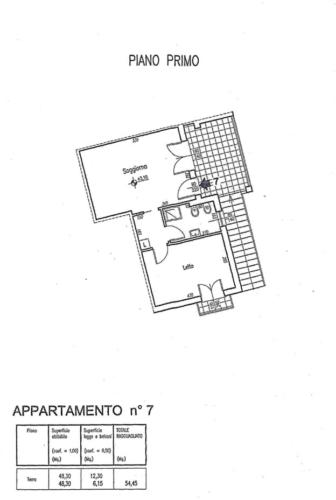 CASApiantina